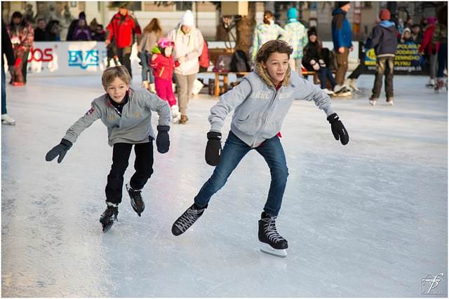 Best Things to Do in Farmington Hills in the Winter
