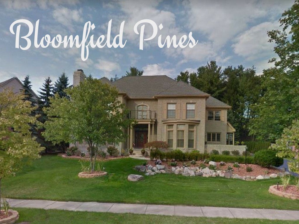 Bloomfield Pines